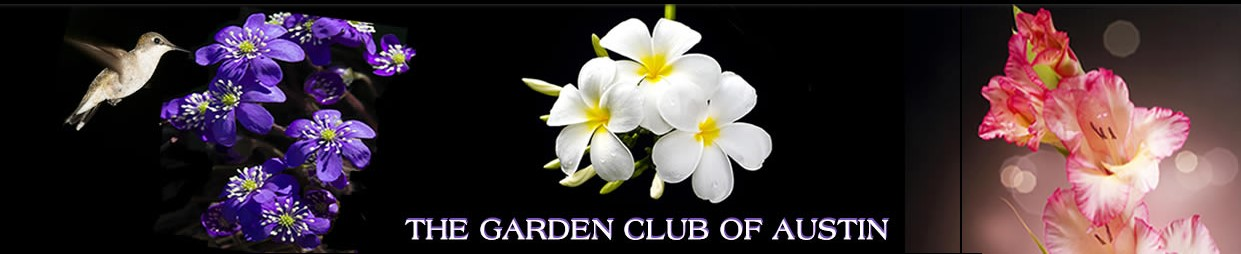 The Garden Club of Austin